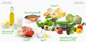 what is low carb diet